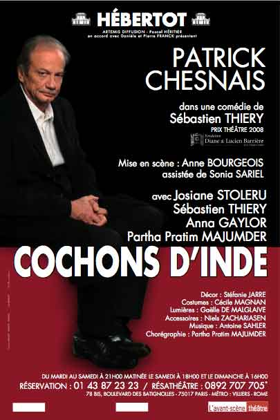 Read more about the article Cochons d'Inde